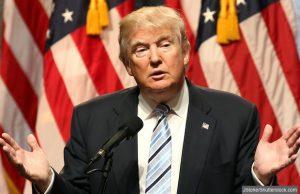 Donald Trump satire